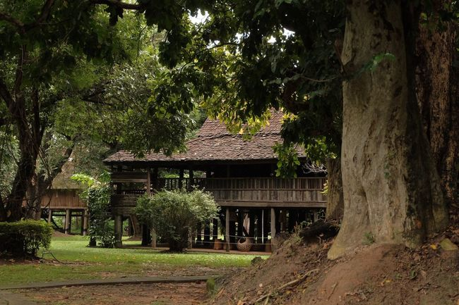 Thai northern local house Tree Plant Architecture Built Structure Growth Building Exterior Nature No People Building House Green Color