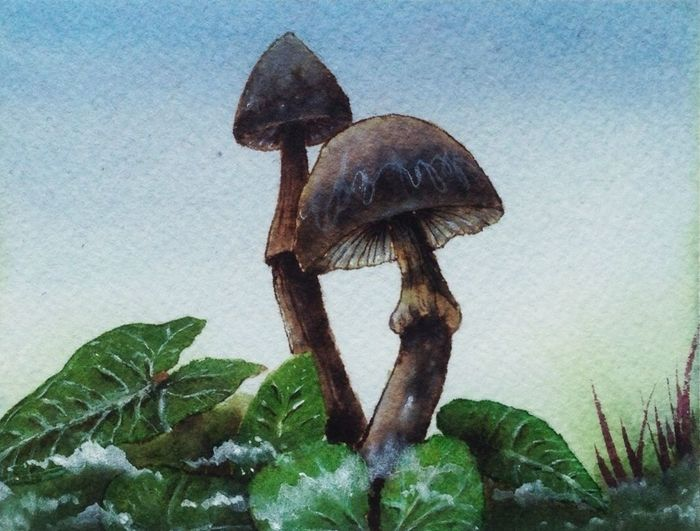 Check This Out WaterColorCollection mushroom