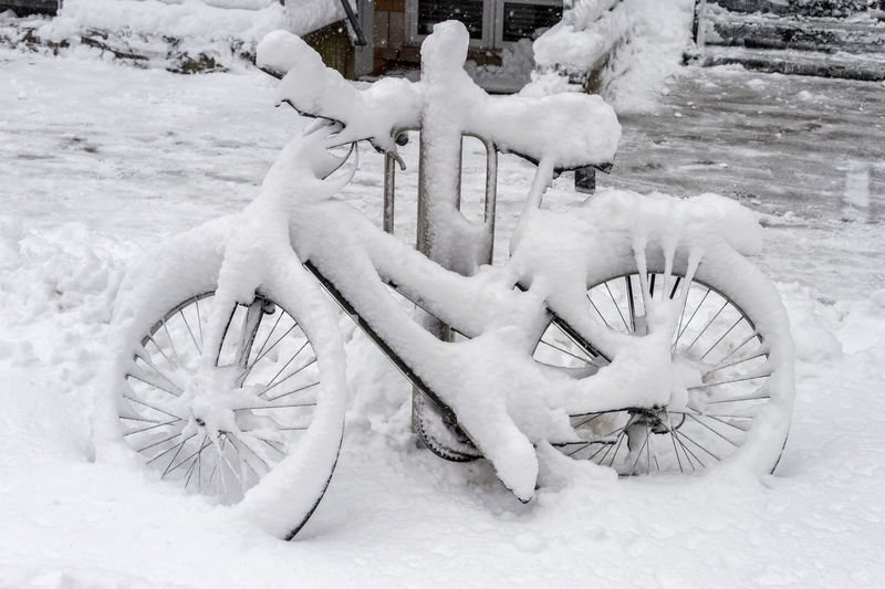 Bike covered