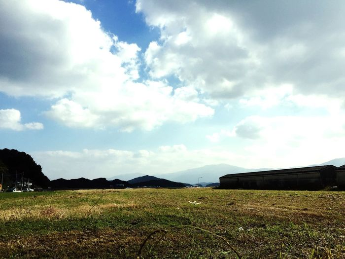 今日 の 現場 Sky Landscape Nature Cloud - Sky Day Field Growth No People Grass Rural Scene