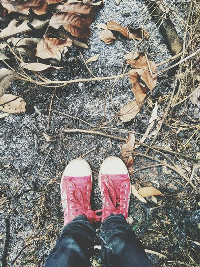Feet Converse Earth Ash Burnt Dry Dryleaves Ground Outdoors Nature the Earth's burning Savetheplanet Save The Nature Save Earth