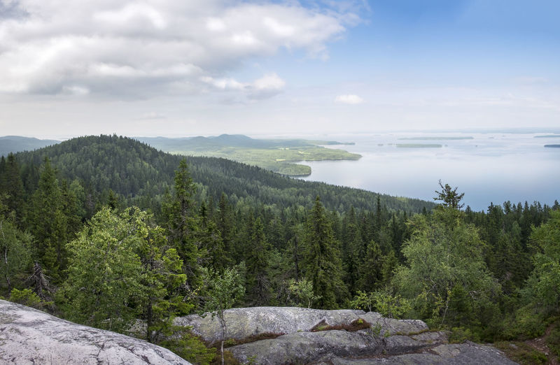 Scenic landscape at day time with lake and forest in Koli national park, Finland Blue Blue Sky Cloud - Sky Day Forest Green High Hiking Hills Horizon Over Water Idyllic Scenery Lake Landscape Mind  National Park Nature No People Outdoors Peace And Quiet Peaceful Pure Scenics Silence Spruce Trees