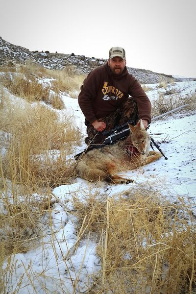 Showcase: December Coyote Hunting Coyote Predator Hunting The Hunter Wyoming December Morning