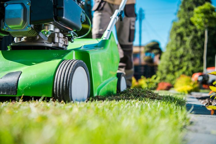 Surface level of lawn mower on grass