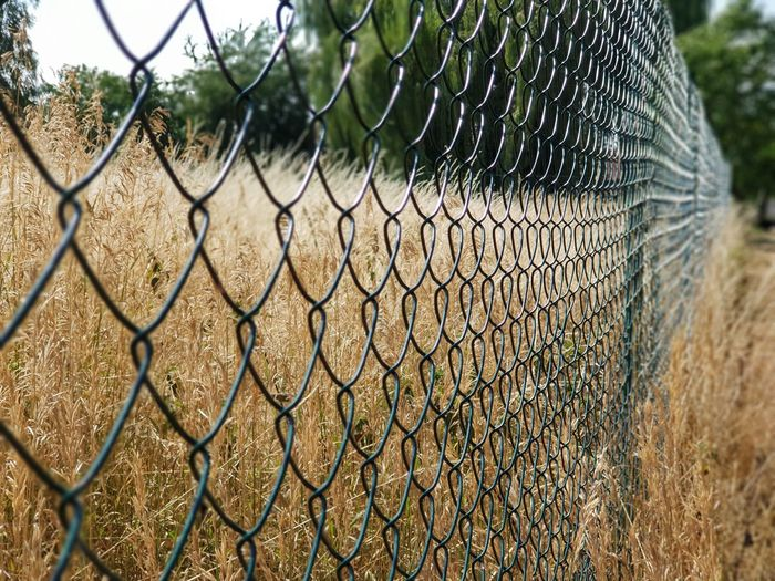Close-up of chainlink fence on land