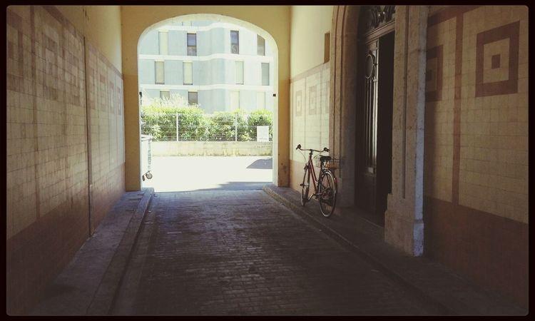 Bike Can You Find The Hidden...? Hidden Path