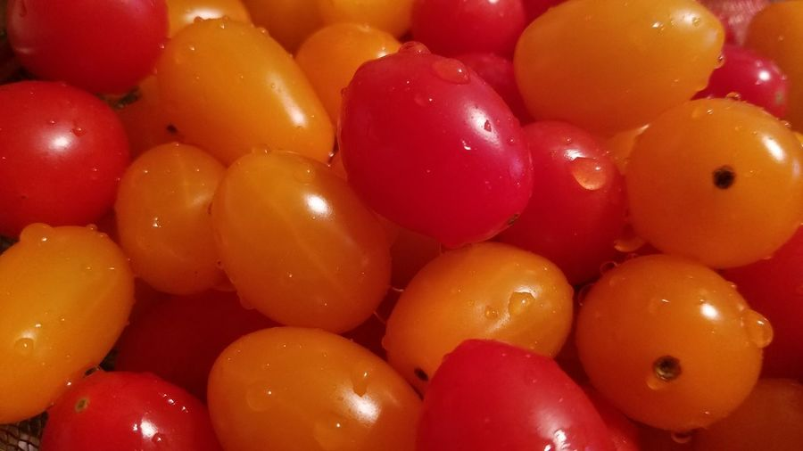 Sweet Juicy Grape Tomatoes Food Freshness Ready-to-eat Summer Tomatoes Summer Produce