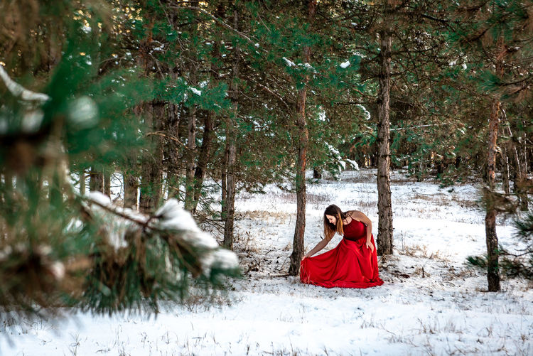 Morning Light Green White Background Pinetrees Tree Forest Copy Space Natural Snowy Cold Temperature Winter Snow Girl Woman In Red Red Dress Red Outdoors Nature Women Beauty In Nature Young Adult One Person One Woman Only Day