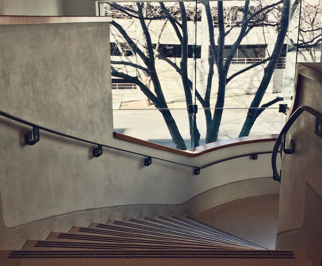 Railing Steps And Staircases Steps No People Architecture Staircase Indoors  Day Window Tree EyeEmNewHere