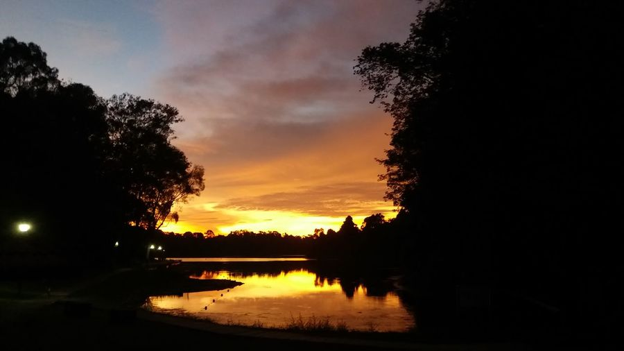 golden hours Evening Sun Sunset Colors Nature Walk Forest Walk Lake View Water Reflections Water Ripple Water And Landscape Nature Nature Landscape Rainforest Tree Water Sunset Lake Silhouette Reflection Sky Cloud - Sky Atmospheric Mood Dramatic Sky Reflecting Pool Reflection Lake Moody Sky Atmosphere