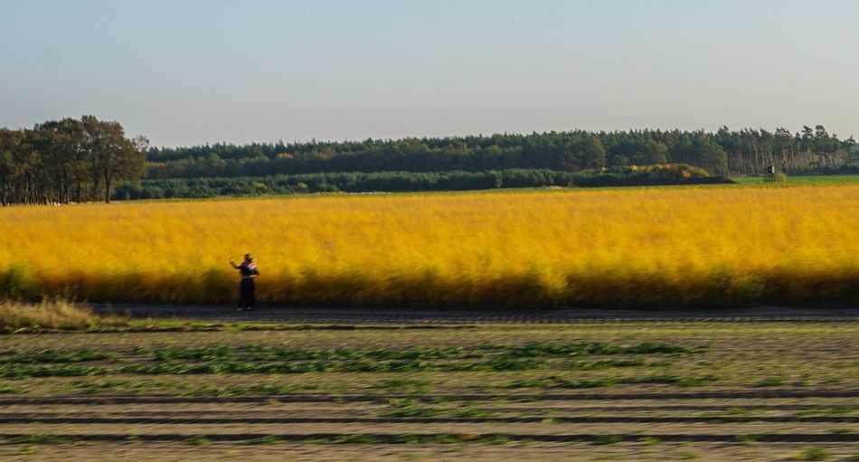 Colorful Speed Photography Plant Land Field One Person Beauty In Nature Landscape Tranquil Scene Tranquility Sky Tree Scenics - Nature Growth Nature Environment Real People Rural Scene Agriculture Standing Farm
