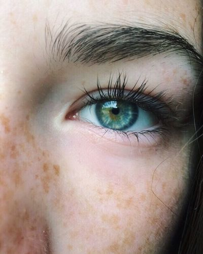 Human Eye Eyelash Human Body Part Blue Eyes Eyesight Eyebrow Close-up Sensory Perception Iris - Eye Eyeball Human Face One Person Real People Human Skin Looking At Camera Portrait Indoors  Day Adult People