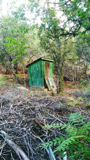 Built Structure Architecture Building Exterior House Tree No People Day Outdoors Nature Shed Wood Wood Shed Jemez New Mexico Outhouse