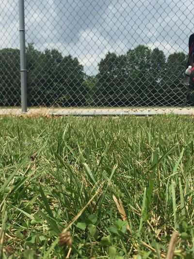 Grass Chainlink Fence Soccer Field Sport Day Soccer Playing Field Field Growth Team Sport No People Nature Close-up Sky