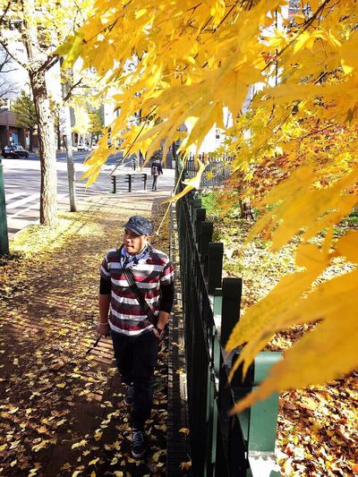 Alone Tree Autumn Full Length Standing Outdoors Leisure Activity Lifestyles Yellow Day Real People Men Warm Clothing One Person Adults Only Adult Traditional Clothing People Nature Only Men Sapporo Japan Park