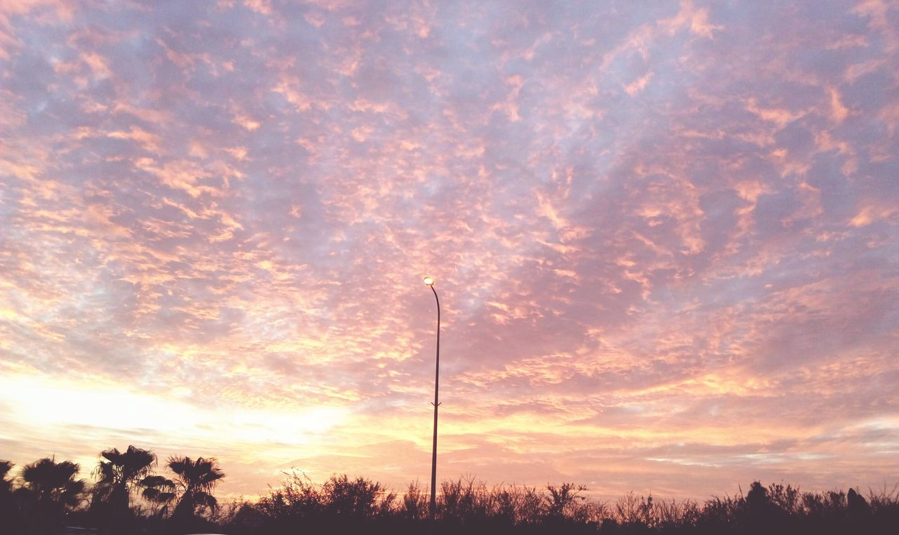 sunset, sky, cloud - sky, beauty in nature, silhouette, nature, tree, outdoors, low angle view, tranquility, no people, scenics, day