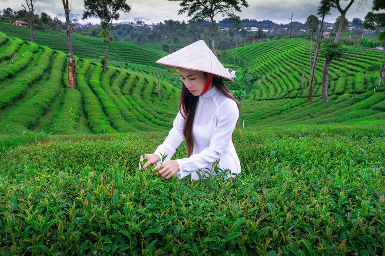 Beautiful woman working in farm