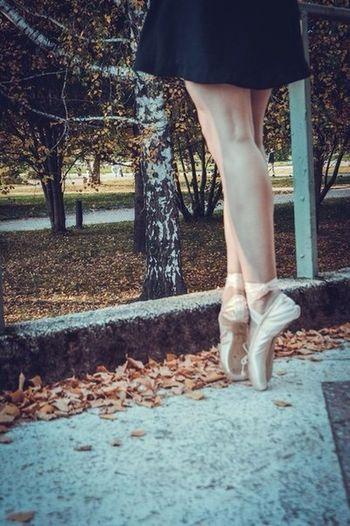 My_foto пуанты теги балет