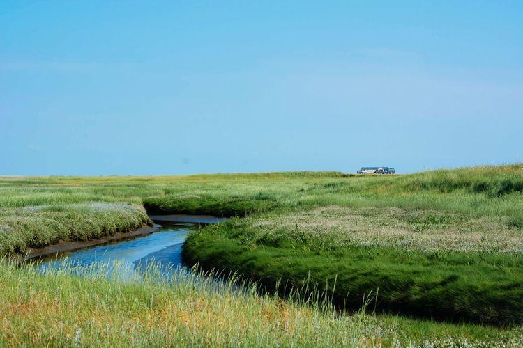 Stream Amidst Grassy Field Against Sky