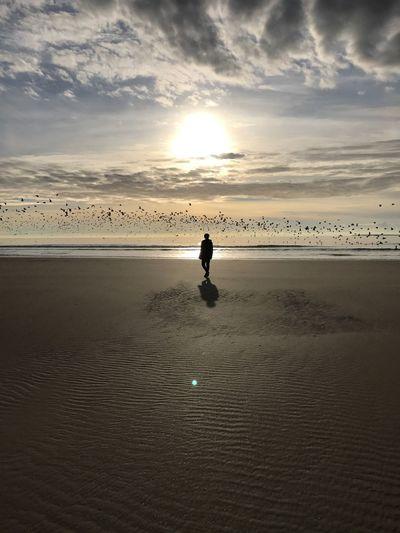 No Filter Beach Beach Photography Nature_collection Sun Sandy Beach Wales Winter Shades Of Winter