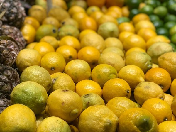 Lemons on market Shop Brazil Fruit Food Citrus Fruit Food And Drink Healthy Eating Freshness Abundance Large Group Of Objects Market Lemon Wellbeing Yellow Market Stall Retail  No People Organic Business Stack For Sale Close-up