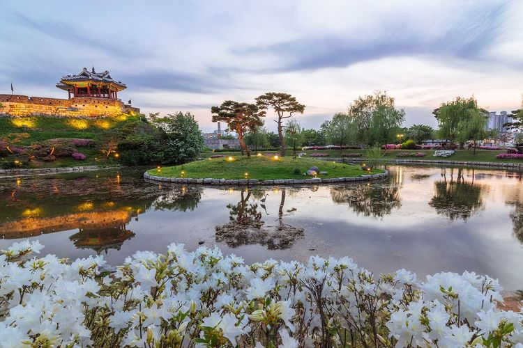 Suwon Hwaseong Fortress Spring Night Landscape Night View Nightscape Reflection
