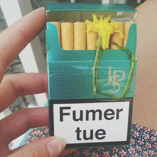 Smoke Métaphore Petite Fleur Cigarette