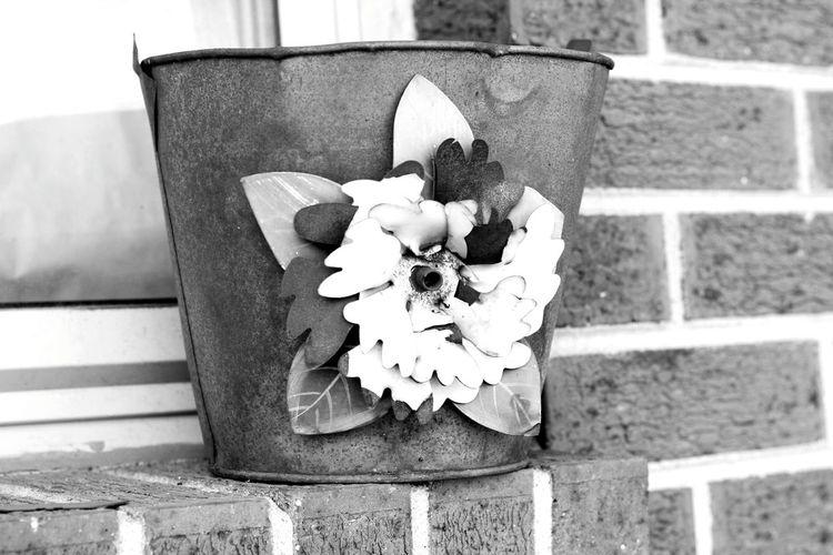 Old Beauty First Eyeem Photo Blackandwhite Rusty Flower Bucket Window Sill Outdoor No People