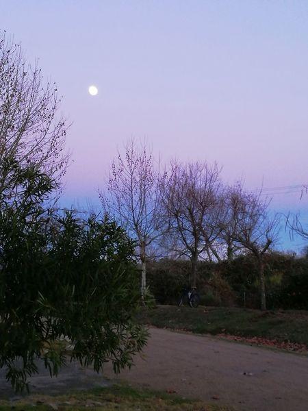 Atardecer Mirando La Luna