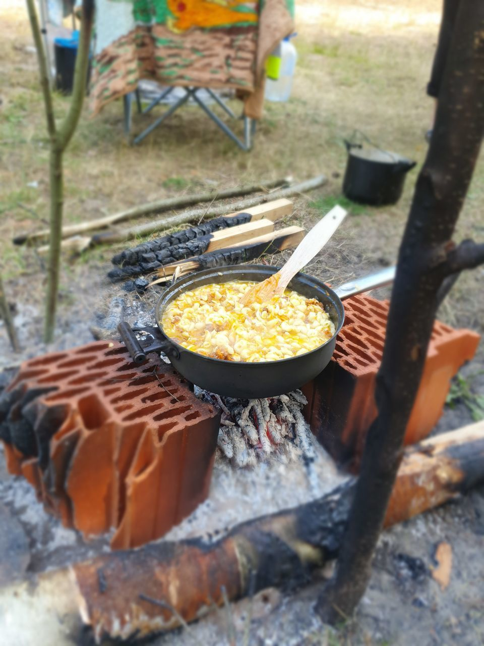food, food and drink, kitchen utensil, preparation, barbecue, day, no people, heat - temperature, outdoors, barbecue grill, preparing food, selective focus, nature, meat, freshness, metal, high angle view, close-up, front or back yard, burning