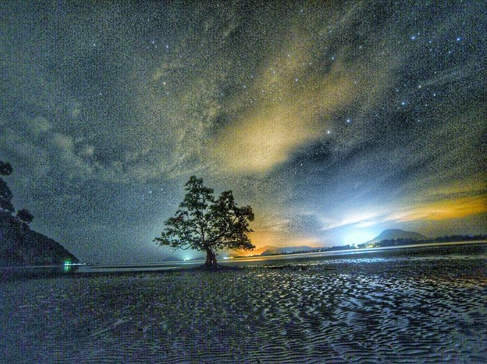 Mersing Night