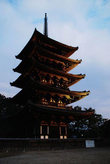 奈良公園 Japan 五重塔 Nara,Japan Traveling