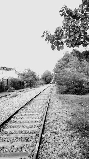 Train in tha city Railroad