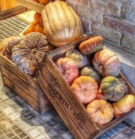 тыковки простотак саронамаркет Saronamarket Sarona Pumpkin Occasionally Fun Autumn World_best Instaisrael Instagram_israel Insta_Israel Myisrael Instagram_israel_ Picoftheday Helloween Morning Food Mood Instaphoto