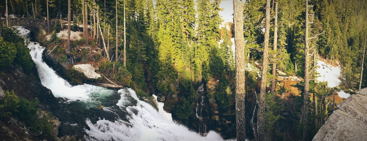Nature Tree Scenics Tranquil Scene Beauty In Nature Forest Waterfall No People Tranquility Outdoors River Water Day Travel Destinations Mountain Sky Live For The Story Live For The Story