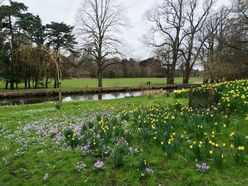 Bute Park Cardiff Check This Out