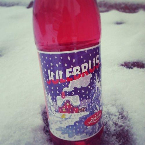 Vinter Jul Julebrus Snø
