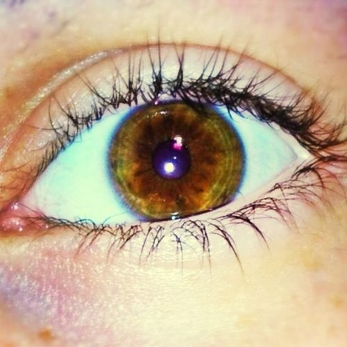 Almost Had Green Eyes -.- Anyways First Picture And 0 Followers \0/