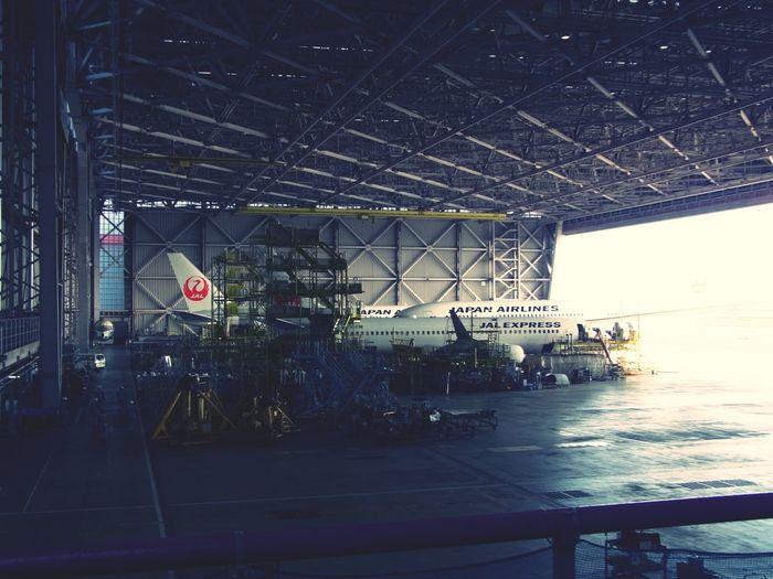 Jal Boeing787 Boeing737 Boeing767JAL工場見学