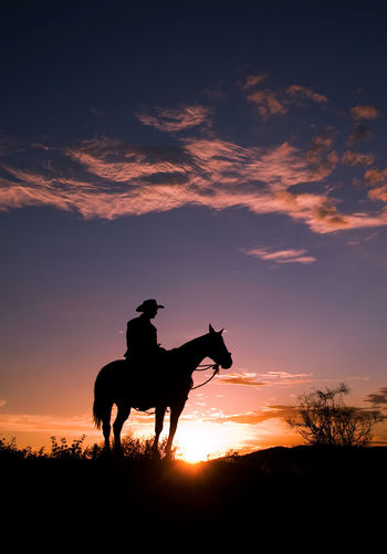 Low angle view of silhouette man on horse against sky during sunset