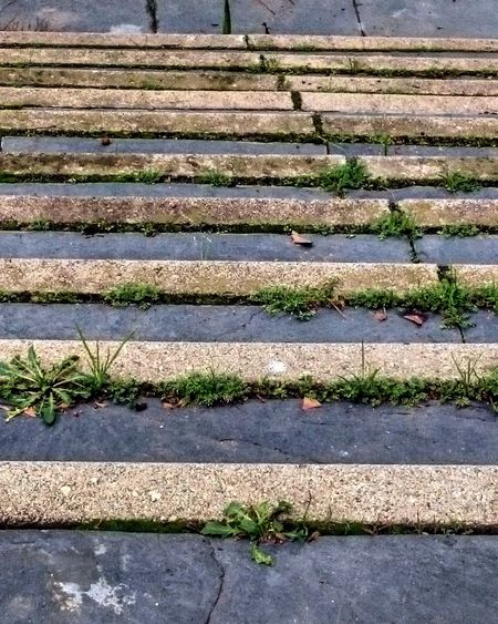 Stairs. Stairs Stairs_collection Stairs Geometry Stairs Down Stairs Up Downstairs Upstairs Outdoors Close-up Pavement Eyeem Stairs Collection EyeEm Gallery Eyeem Photography Eyeem Best Pictures EyeEm Best Shots Eyeem Best Picture EyeEm Best Pics EyeEm Best Photography EyeEm Best Edits Eyeem Urban Photography Eyeem Urban Photo EyeEm Urban Eyeem Urban Shots Barcelona Catalonia