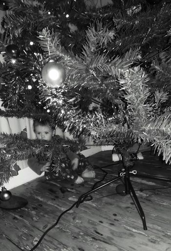 Little Baby Faye Hiding where could she be Hmmmm Christmas Family Fun