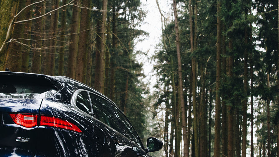 4wd 4x4 JAGUAR Light Nature Red Roof SUV