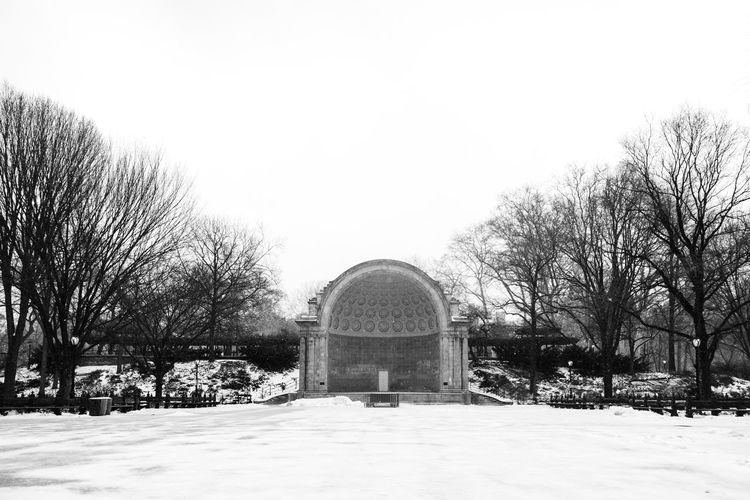 Arch Architecture Archway Bare Tree Black And White Built Structure Bw Central Park Clear Sky Day Entrance Façade Film Footpath History Leading Nature Outdoors Park - Man Made Space Scenics Sky Tranquil Scene Tranquility Tree Winter