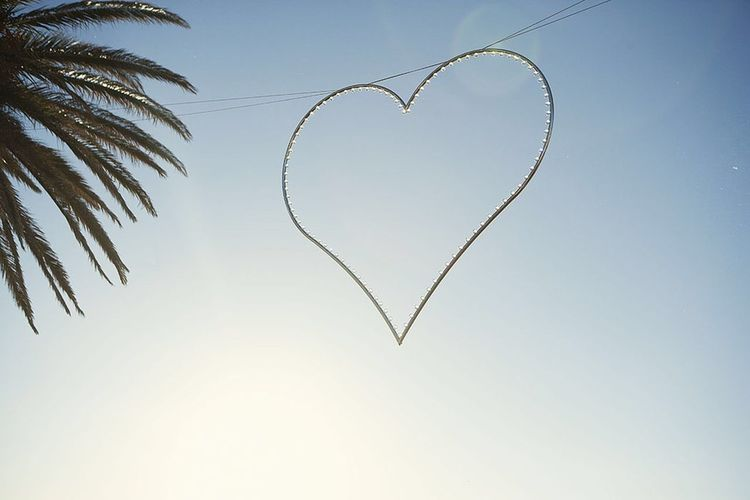 Heart Shape Love Clear Sky No People Nature Day Sky Beauty In Nature Outdoors Flying Close-up