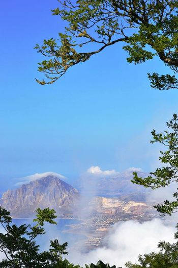 Erice, Marsala (TP) Landscape Landscape_Collection Landscape_photography Italy Sicily Nature Summer Branch Pinaceae Foggy