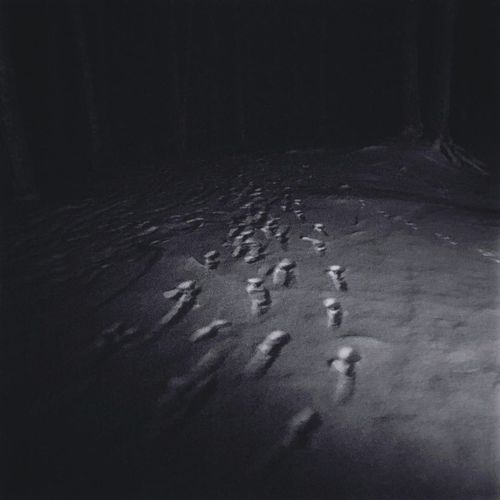 Creepy Trees Spooky Footsteps Night Nightphotography Night Forest Forest Cold Temperature Winter Snowflake Snow