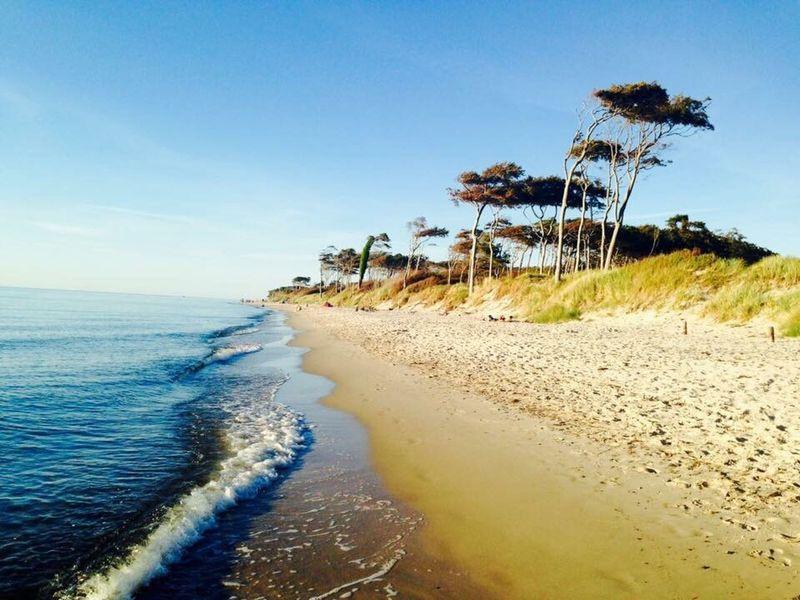Ostsee Ostseeküste Weststrand Beach Beachphotography Relaxing Enjoying Life Water Germany Summer Nature Landscape