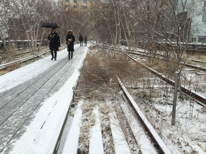 The beginning of snow on a Sunday afternoon doesn't deter walkers on the Highline, an elevated park/walkway in Manhattan, a repurposed rail line. Adult Chelsea City Cold Temperature Day Elevated Rail Highline Nature New York City NYC Photography Old Railway Line Outdoor Photography Outdoors People Real People Snow Snowing Urban Landscape Urban Lifestyle Walking Weather Winter