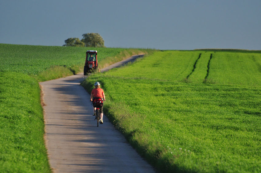 Agriculture Alone Beauty In Nature Bycicle Day Diagonal Lines Field Grass Green Color Landscape Leaves Nature One Person Orange Color Outdoors Real People Rear View Rear View Mirror Red Color Road Rural Scene Sport Tractor